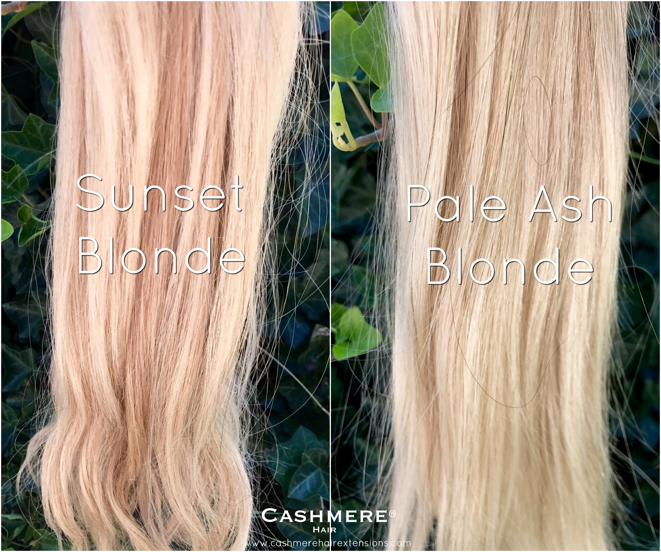 Sunset Blonde Vs Pale Ash Blonde Cashmere Hair Clip In Extensions